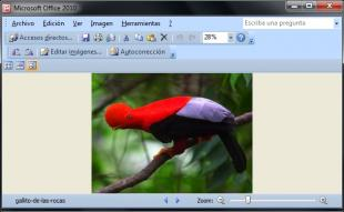 Microsoft Office Picture